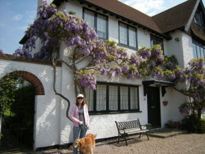 My last dog and me, outside a friend's house which is covered with my favourite flower